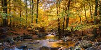 Πώς Διασχίζουμε Ποτάμια και Ρέματα την Άνοιξη